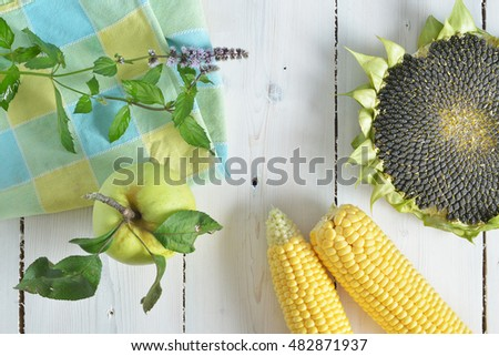 ripe sunflower, corn, mint and apples on a white wooden background