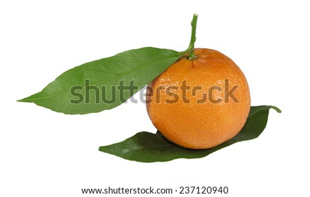Ripe tangerine wits leaves isolated on white background - stock photo