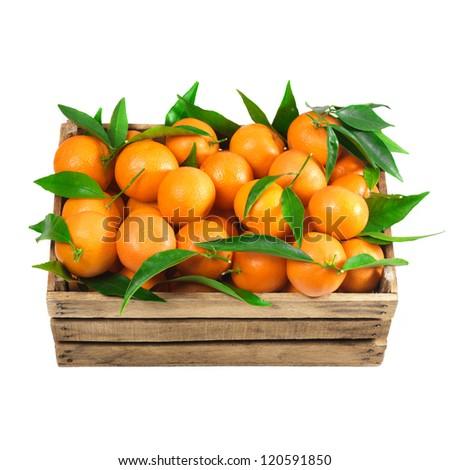 Ripe tasty tangerines with fresh leaves in wooden box isolated on white - stock photo