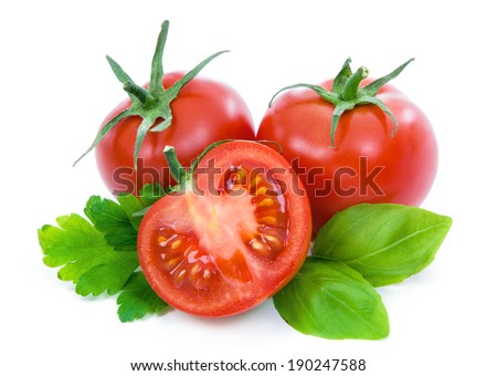 Ripe tomatoes with parsley and basil.  - stock photo