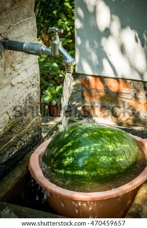 Ripe watermelon with splash of water