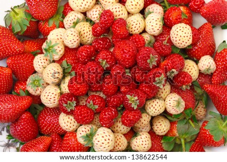 Ripe White and Red Strawberries on plate, white background - stock photo