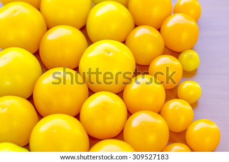 Ripe yellow tomatoes are one by one from the big to the small on a wood background
