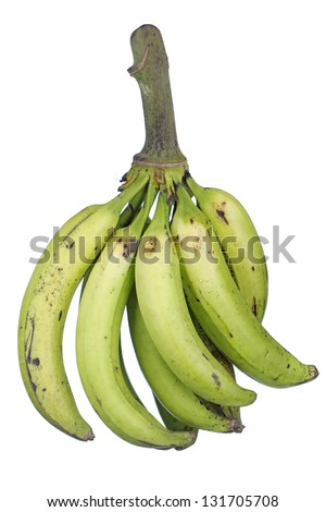 Ripening Plantains; Non sharpened file - stock photo