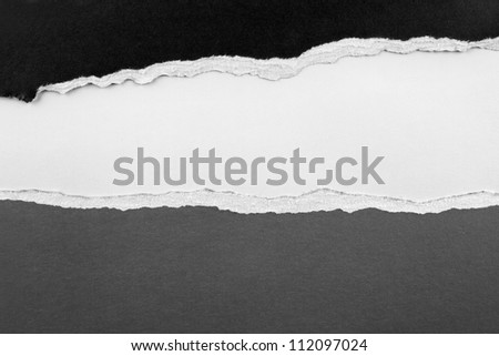 Ripped paper, space for advertising copy - stock photo