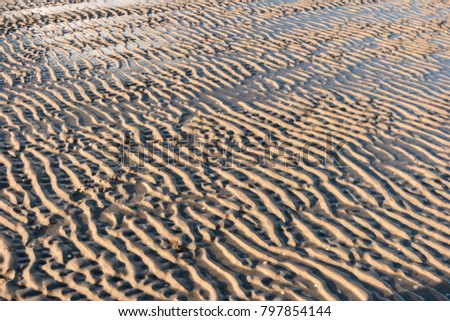 Ripple Marks on the North Frisian Island Amrum in Germany