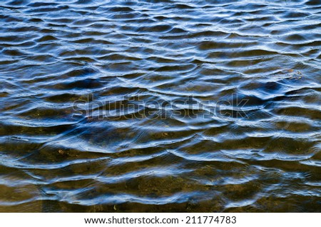 Ripples and small waves in water