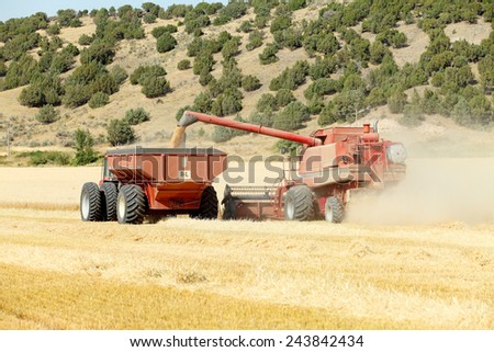 Ririe, Idaho, USA Aug. 8, 2011 A combine harvesting wheat and placing it into a hopper trailer to be taken to a storage facility. - stock photo