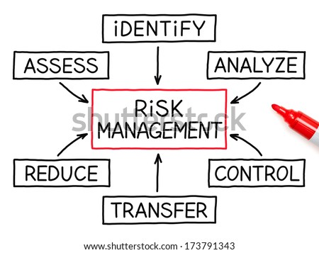risk management essay papers