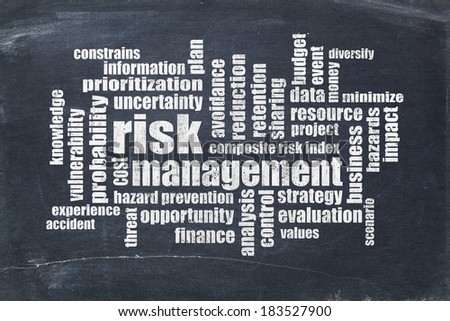 risk management word cloud on a slate blackboard - stock photo