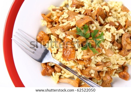 Risotto with mushrooms on a plate decorated with parsley and a fork