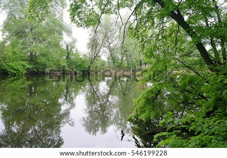River and forest. Nature composition.