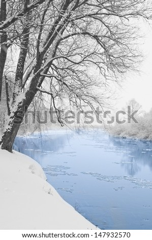 River and tree covered with snow  - stock photo