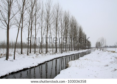 river and trees in the snow in winter in china - stock photo