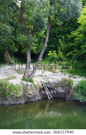 River bank under trees