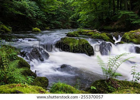 river Bode in the Bode Valley/Harz Mountains in Germany