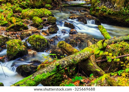 River cascade in a forest in Transylvania mountains-Romania - stock photo