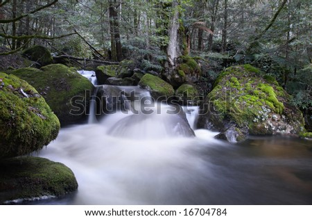 River cascading over moss-covered boulders, in ancient temperate rainforest.  Yarra Ranges, Victoria, Australia. - stock photo