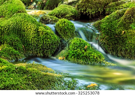 River deep in mountain forest  in Cheile Nerei national park -Romania - stock photo