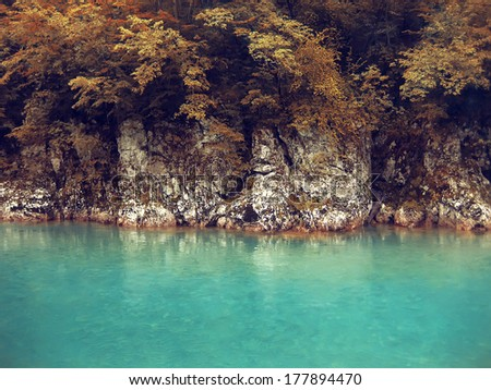 River deep in mountain forest. Nature composition. Nature background - stock photo