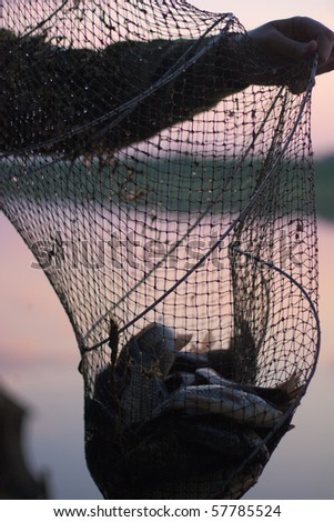 River fish in a corf. Evening. It is time to go home. - stock photo