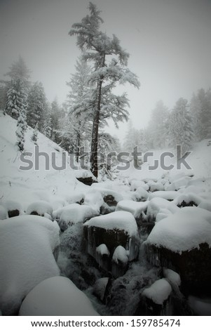 River flowing among stones in the altai's mountains - stock photo