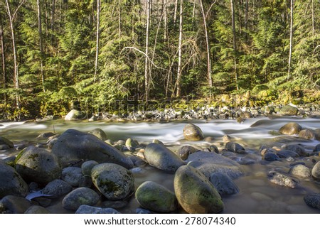 River flowing in the forest with rocks in morning light