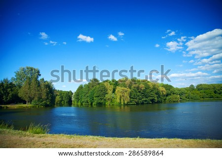 River flowing in the woods on a sunny summer day. The European landscape