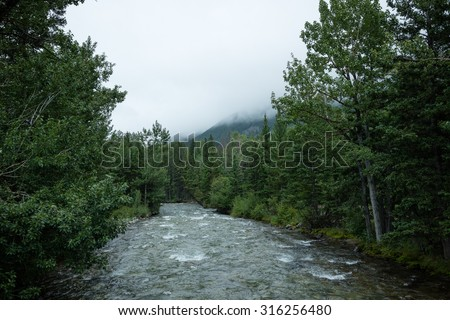 River flowing through lush green forest along the Beartooth highway, Wyoming, USA - stock photo