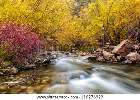 River flows in slow exposure through the many colors of autumn/ Reds and Yellows on the River