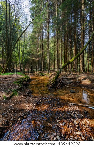 river in a forest near hoehr-grenzhausen