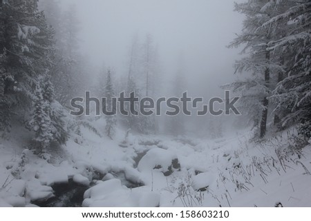 river in altai's mountains - stock photo