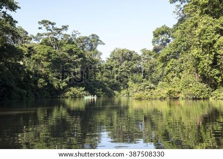 River in Costa rica, tortuguero - stock photo