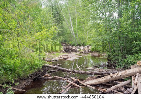 River in forest with log clutters  - stock photo