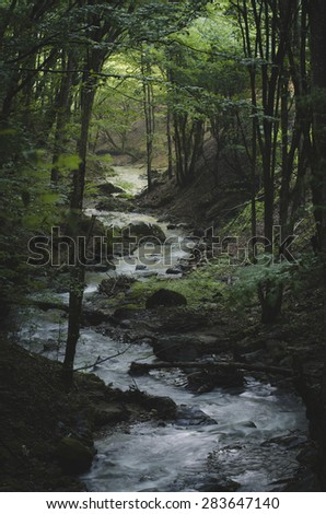 river in green forest in sunset light natural scene - stock photo