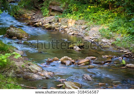 River in mountain forest. Nature composition.