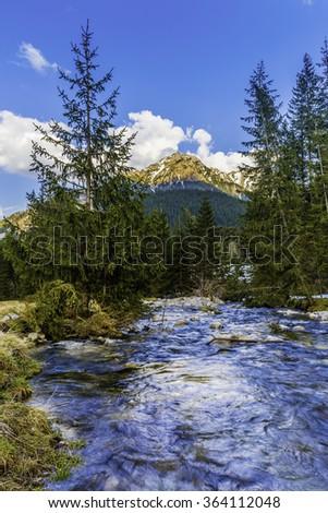 River in Tatra Mountains, Poland - stock photo