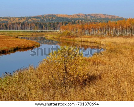 River in the background of mountains. Golden autumn. Indian summer.