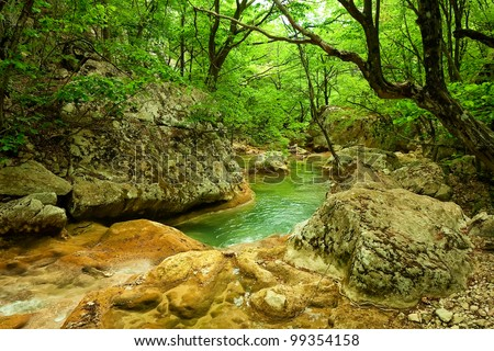River in the forest - stock photo