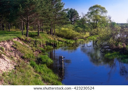 River in the forest. Spring evening. Live, bright colors.