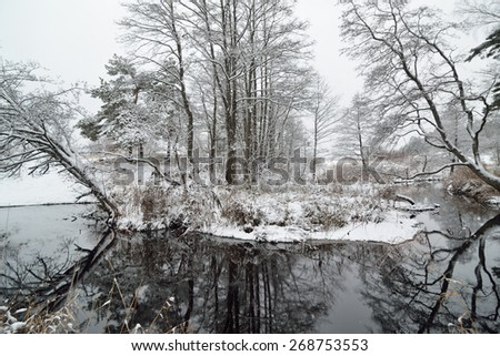 River in the woods covered in snow in winter