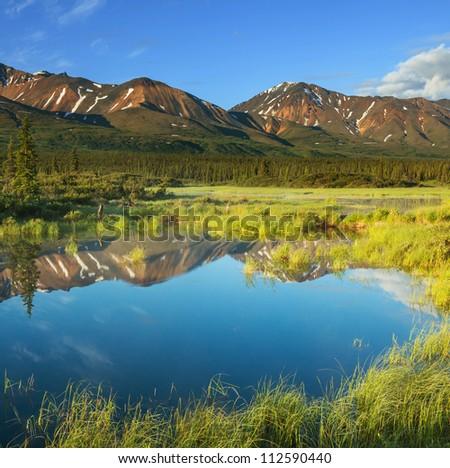 river in tundra on Alaska - stock photo