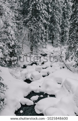 River in winter forest.