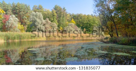River landscape and an autumn wood