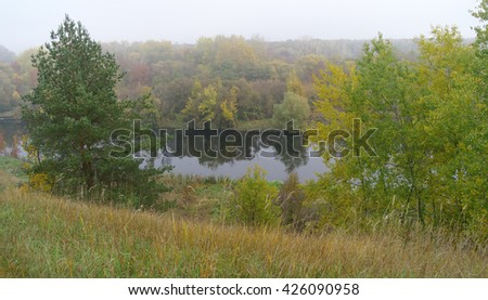 River landscape and autumn wood .