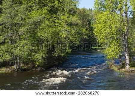 River landscape in spring - stock photo