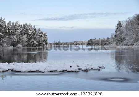 River landscape in winter and tree branches covered with white frost