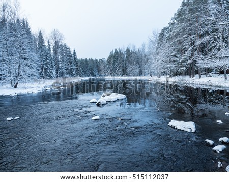 River landscape surrounded by frosty trees in winter