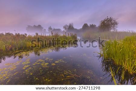 River landscape through foggy marshland on an early morning in september near Haren, groningen, Netherlands - stock photo