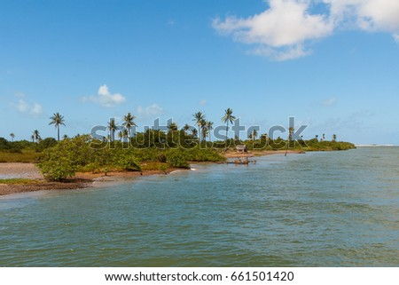 River mouth of  Rio Sao Francisco in Sergipe and Alagoas state, Brazil. Selective focus